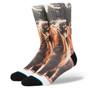 Stance Leos Socks Multi