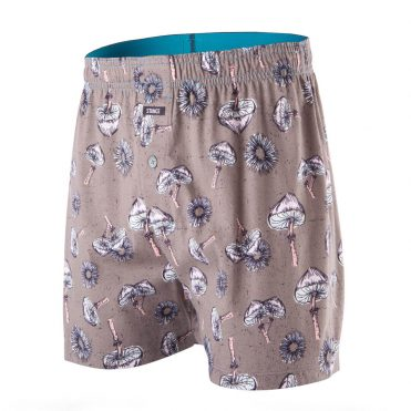 Stance Shrooms Boxer Grey